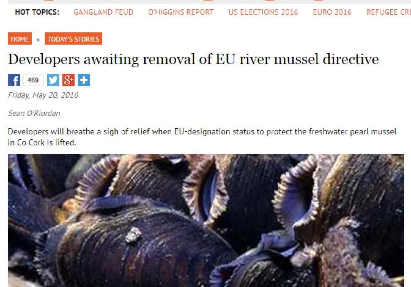 Developers awaiting removal of EU river mussel directive