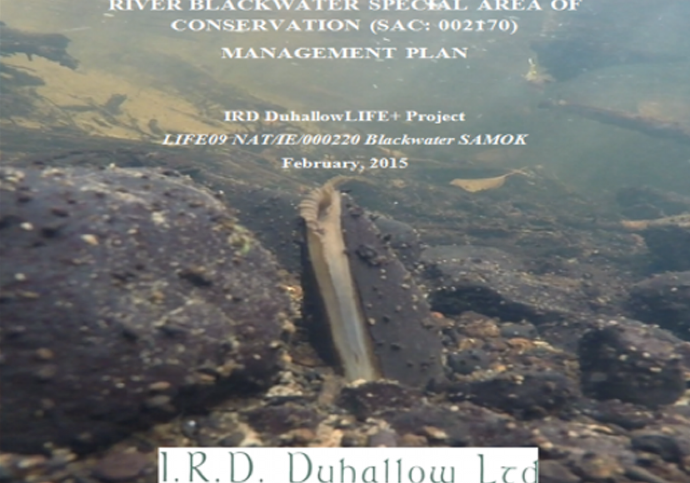 Conservation Plan for the upper River Blackwater SAC