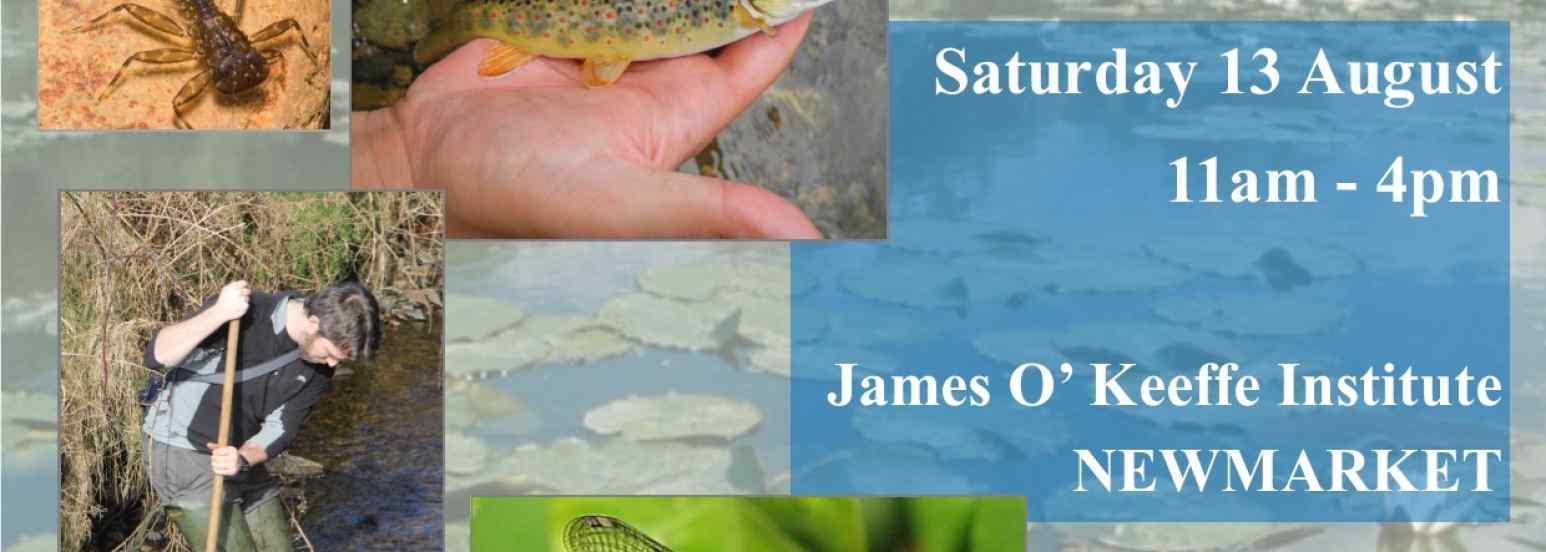 Freshwater ecology workshop
